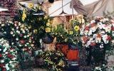 1997-Agriflora-01