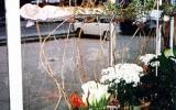 1996-Inda-06