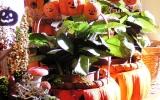 2007-10-22-Inda-05.jpg