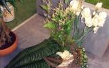 bemutató Flowerex-02