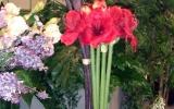bemutató Flowerex-04