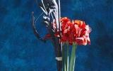 bemutató Flowerex-05