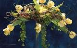 bemutató Flowerex-07