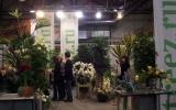 kiállítás Flowerex-06