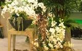 kiállítás Flowerex-09