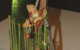 bemutató-Oudenaarde-09
