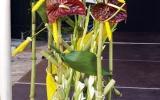 05-színpad-dekorációk-006-KAT-04